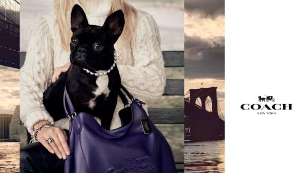 lady-gaga-dog-coach-promo.jpg