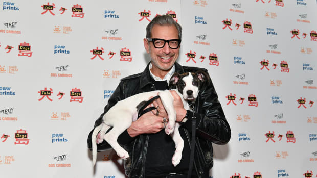 jeff-goldblumisle-of-dogs-special-screening-ny-2