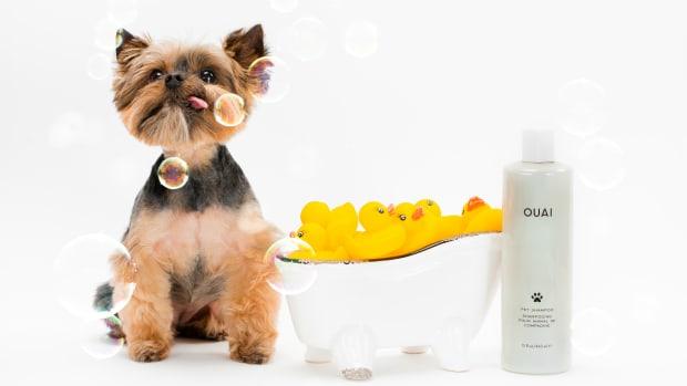 ouai-pet-shampoo-promo