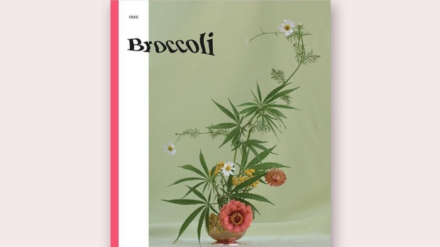 hp-broccoli-magazine