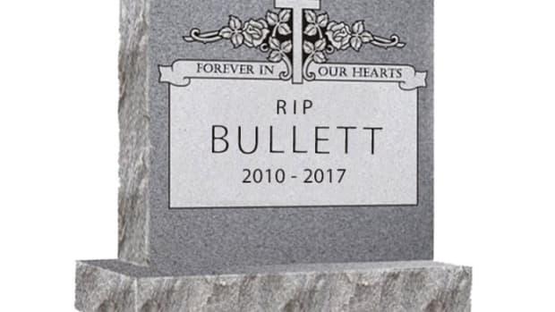 bullet media shutting down