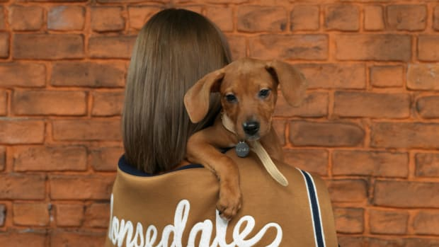 fashion-brands-animal-pet-rescue-shelters-holiday-2018-th