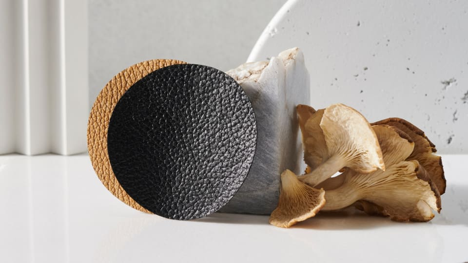 The Next Generation of Leather Alternatives