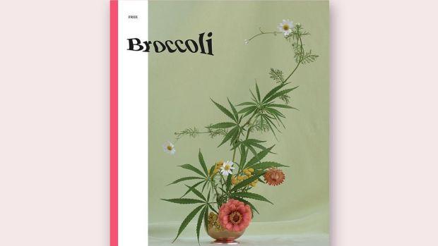 hp-broccoli-magazine