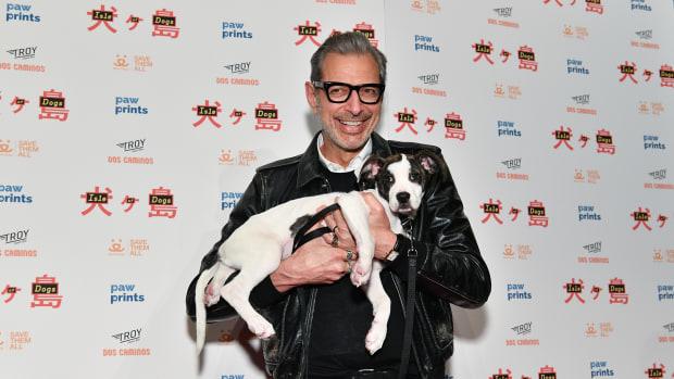 jeff-goldblumisle-of-dogs-special-screening-ny-2