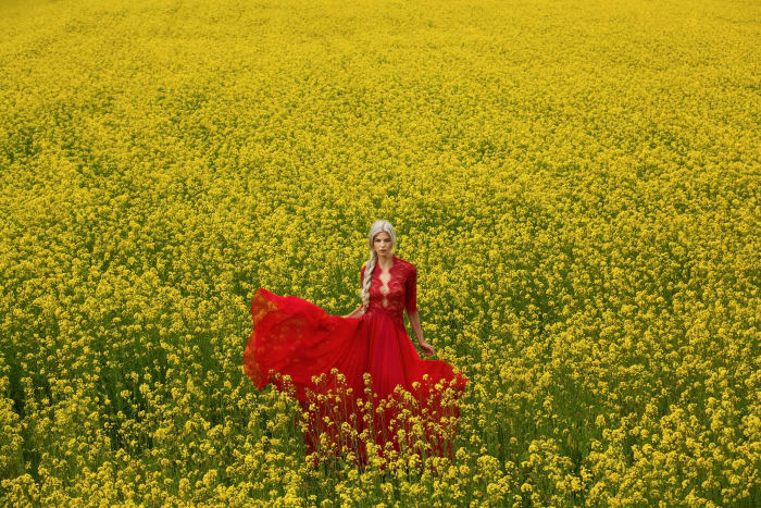 the eye travels - Keziban Barry_Grapeseed Flowers_5689