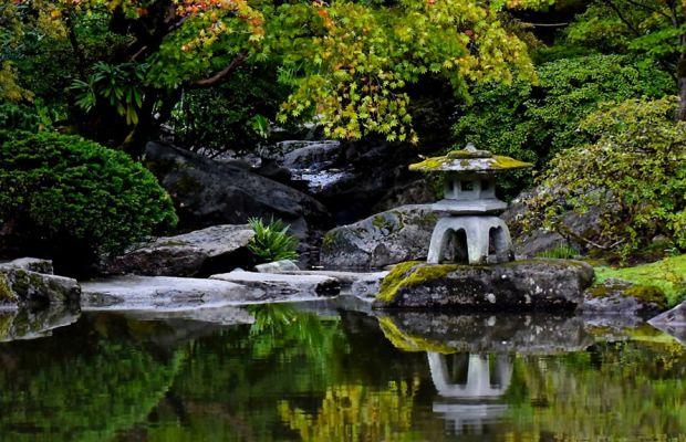 Photo: Seattle Japanese Garden