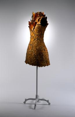 02.Dress,SarahBurtonforAlexanderMcQueen,Spring2011.jpg