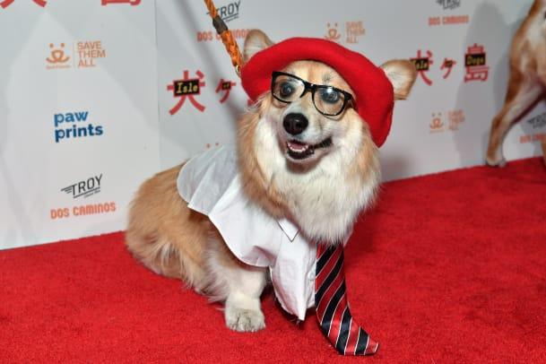 isle-of-dogs-special-screening-ny-5