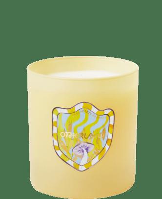 otherland-berkshires-granola-candle