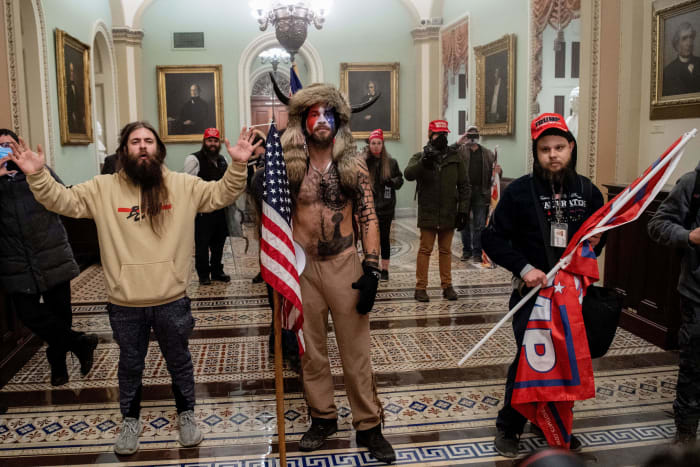 dc-capitol-rioters-costumes