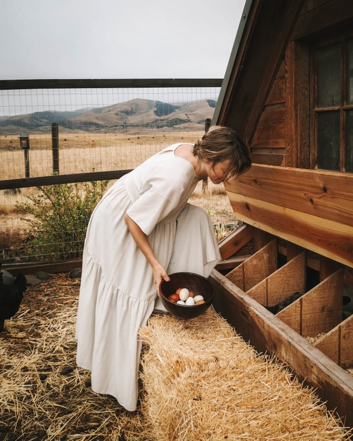 Kristi Reed gathering eggs from her chicken coop.