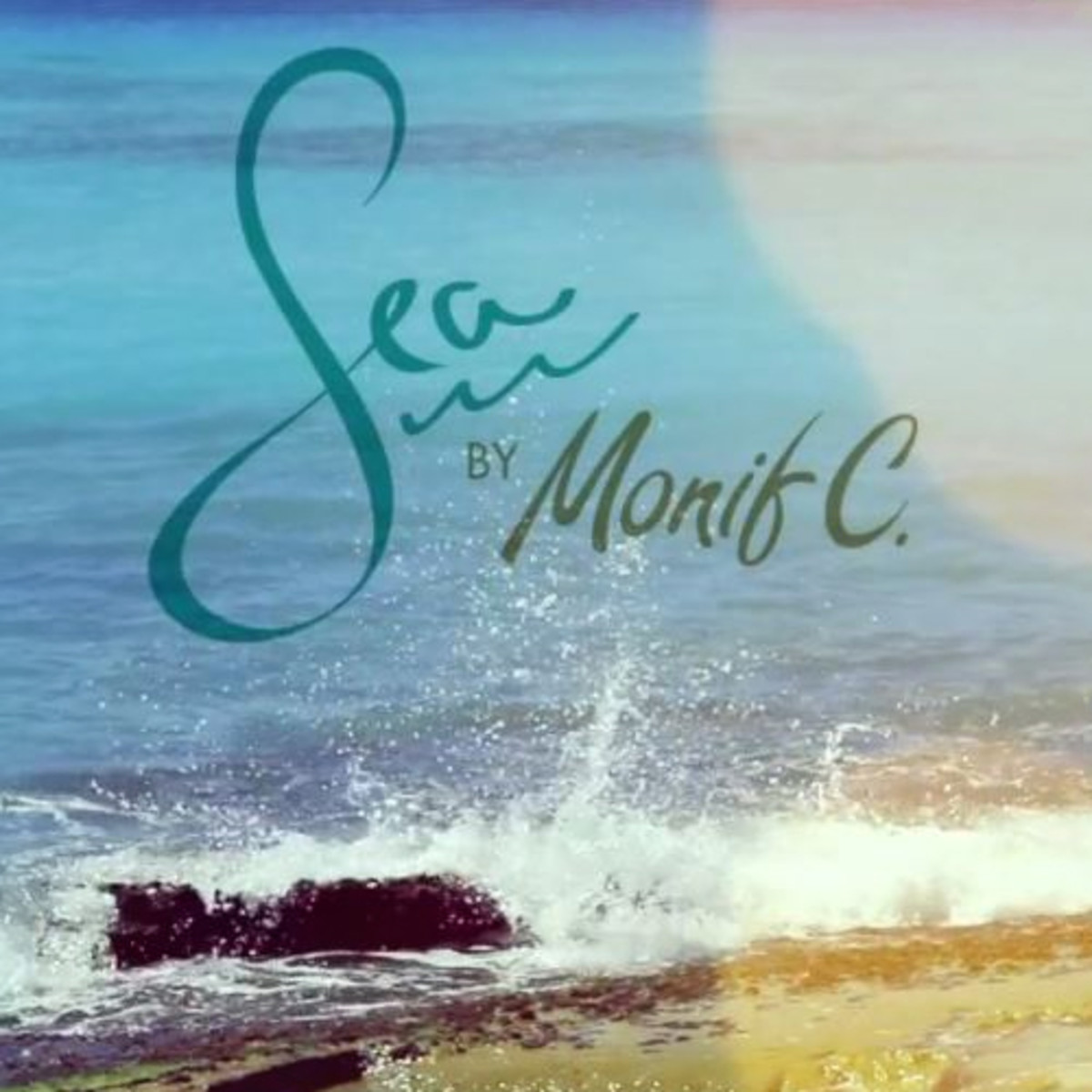 monifc-ig-sea-video-022615.jpg