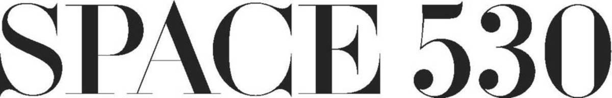 Copy of Copy of Space530+Logo.jpg
