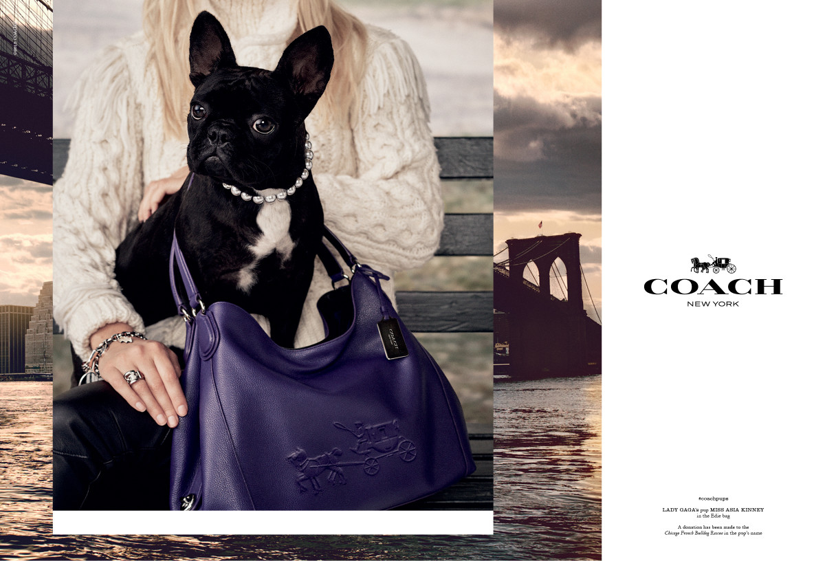 Miss Asia Kinney's fall ad campaign for Coach. Photo: Steven Meisel/Coach