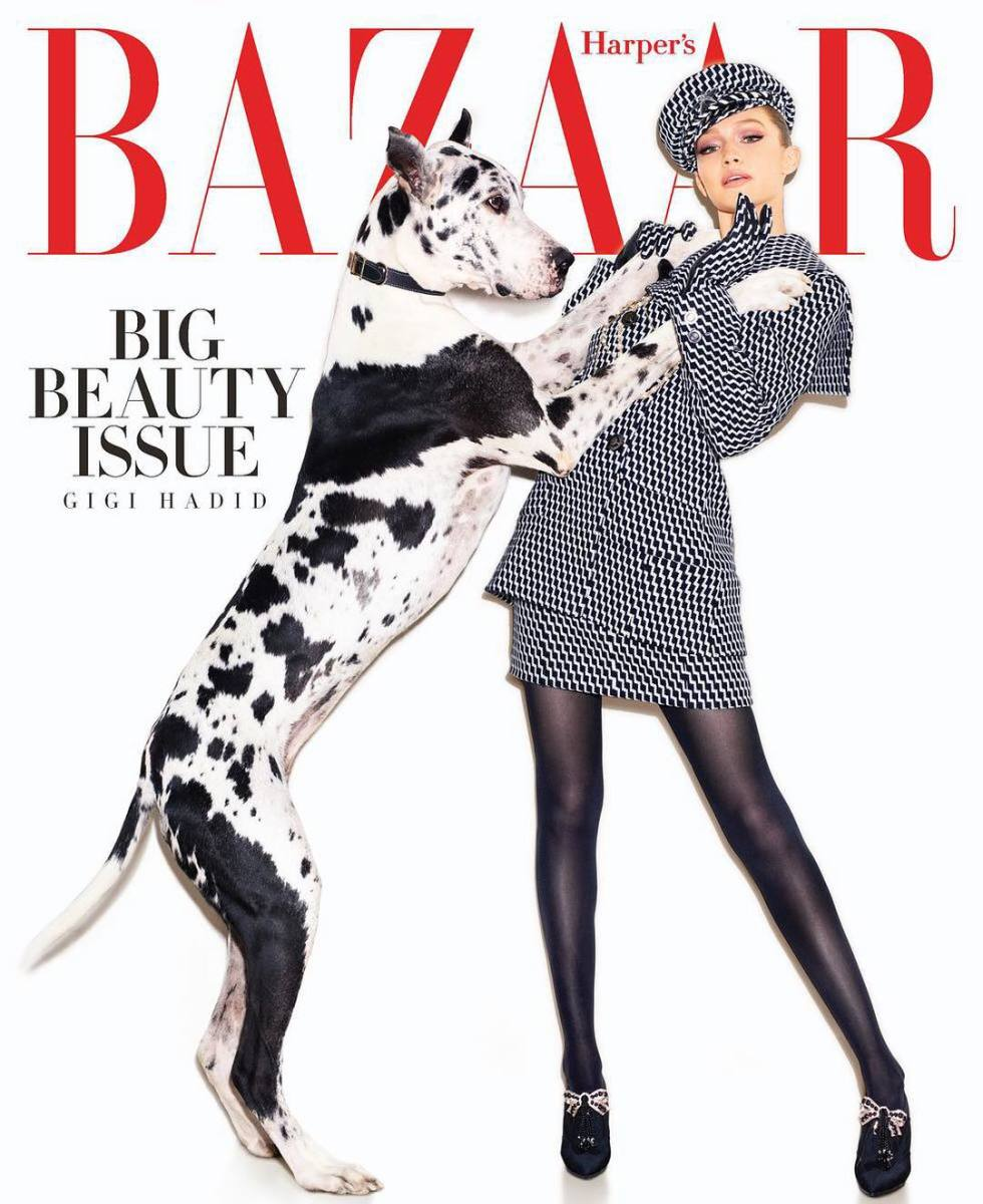 "Gigi Hadid and large dog on the May cover of ""Harper's Bazaar."" Photo: Mariano Vivanco"