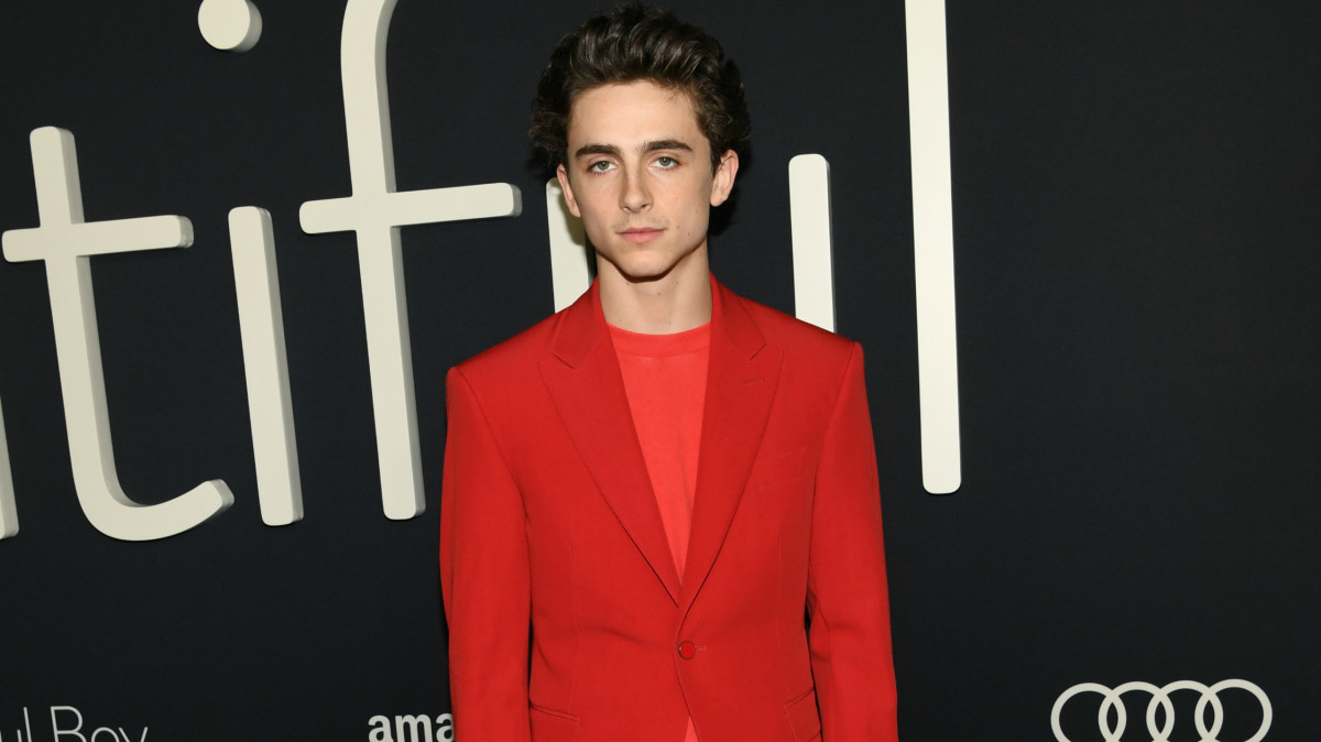 9077322cd9dd Here Is Timothée Chalamet in a Very Good Red Louis Vuitton Suit -  Fashionista
