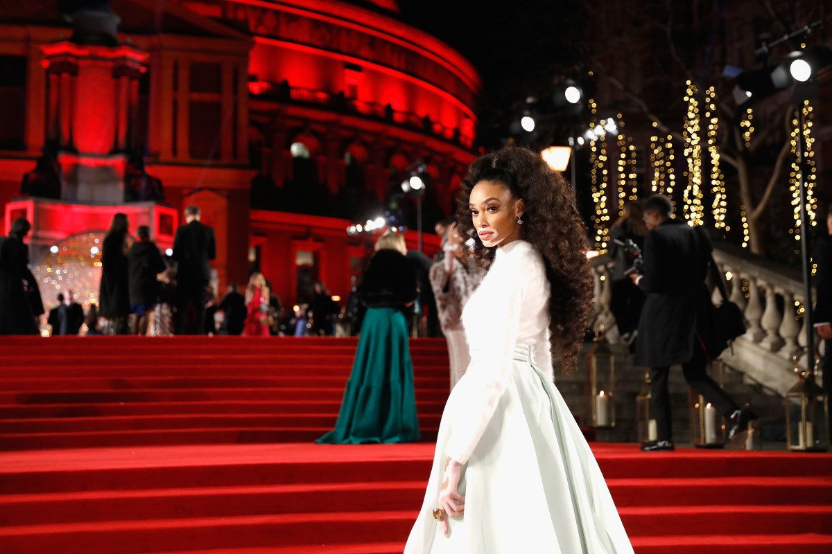 Winnie Harlow at the 2017 Fashion Awards. Photo: Tristan Fewings/BFC/Getty Images