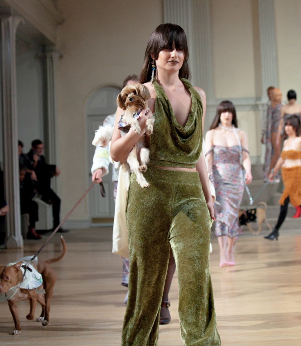 Pups were walked on leashes and carried in models' arms at Gauntlett Cheng's Fall 2018 show. Photo: Gauntlett Cheng