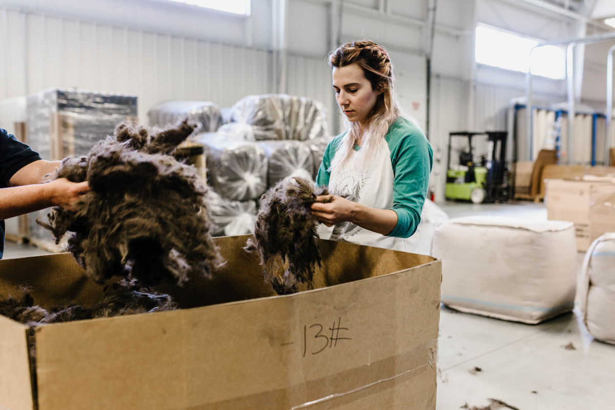 Sorting bison fiber. Photo: Courtesy of United by Blue