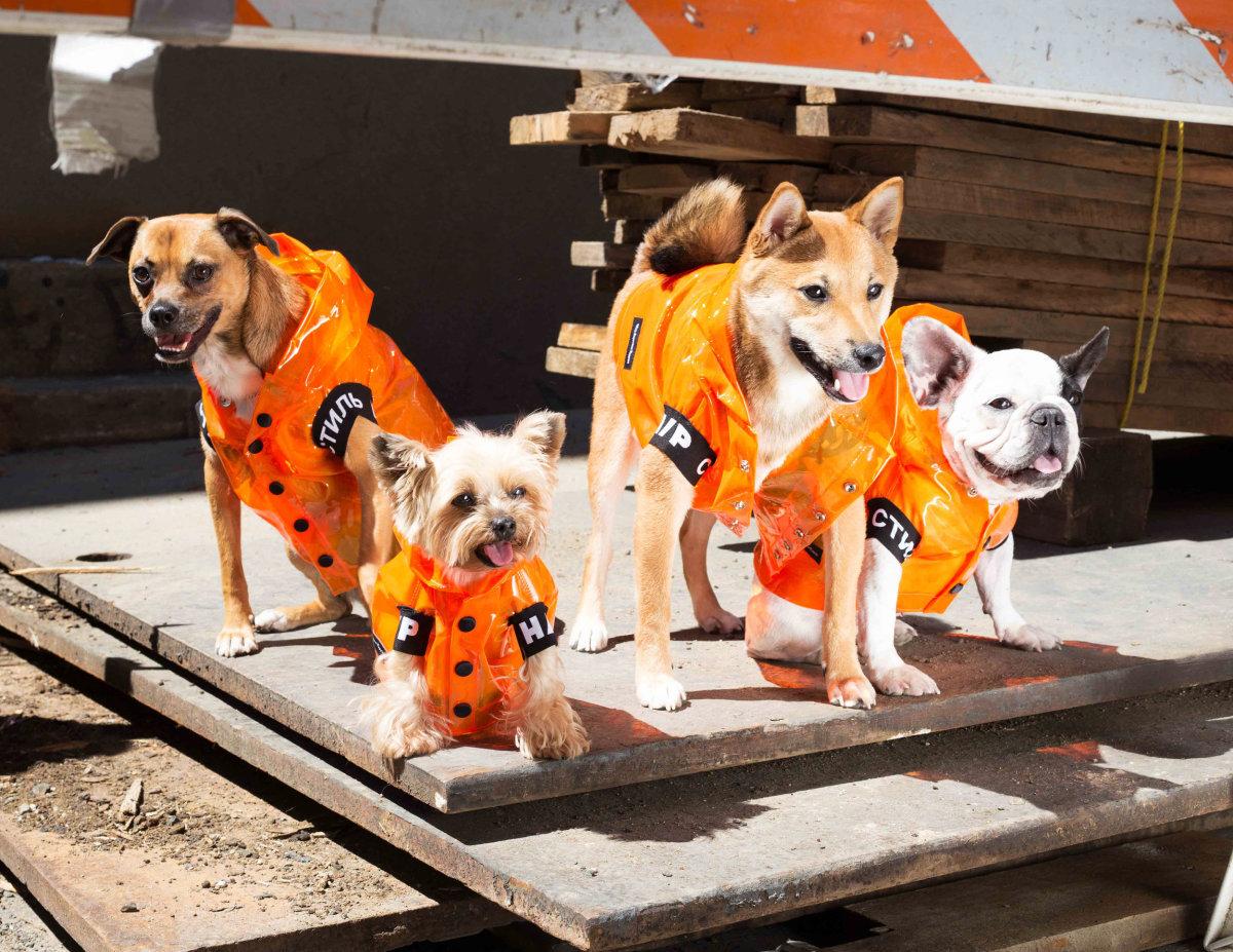 Very Important Puppies x Heron Preston collaboration. Photo: Courtesy of Very Important Puppies