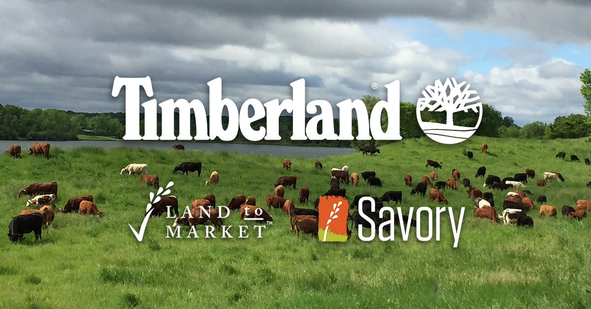 timberland regenerative agriculture savory institute